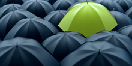 Environmental Management for Business MSc