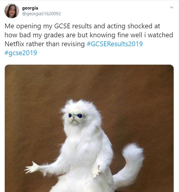 tweet GCSE results day 2019