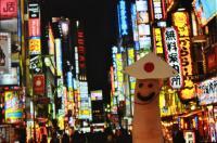 The Japanese Society
