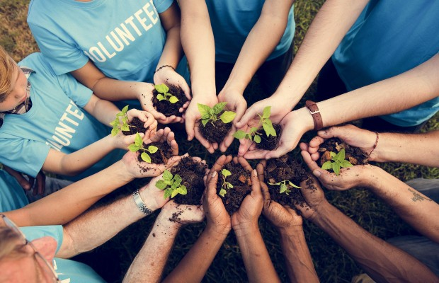 A group of volunteers stand in a circle holding out seedlings that they are planting