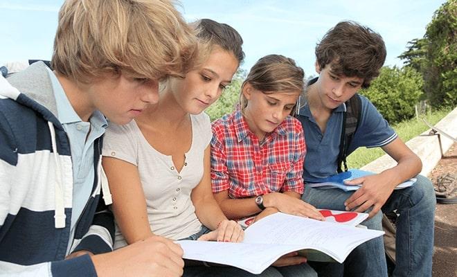 GCSE 4
